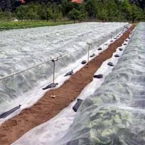 Спанбонд в сельском хозяйстве